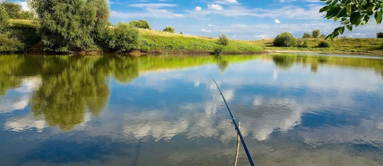 Как проходит рыбалка на реке?